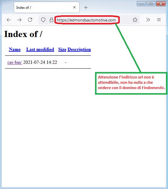 Clicca per ingrandire l'immagine del falso sito di Findomestic che cerca di indurre il malcapitato ad inserire le credenziali del suo account ma in realtà si tratta di una TRUFFA!