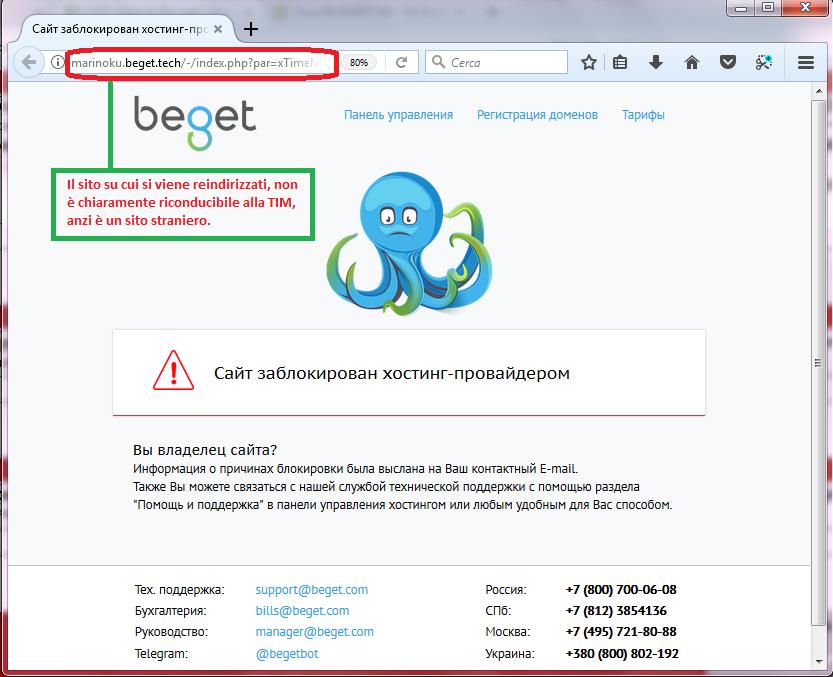 Clicca per ingrandire l'immagine della falsa pagina web di un sito straniero, chiaramente non affidabile.